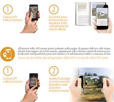 multimedia_2