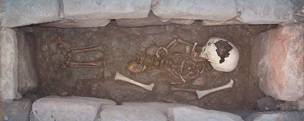 archeologia cooperativa ara